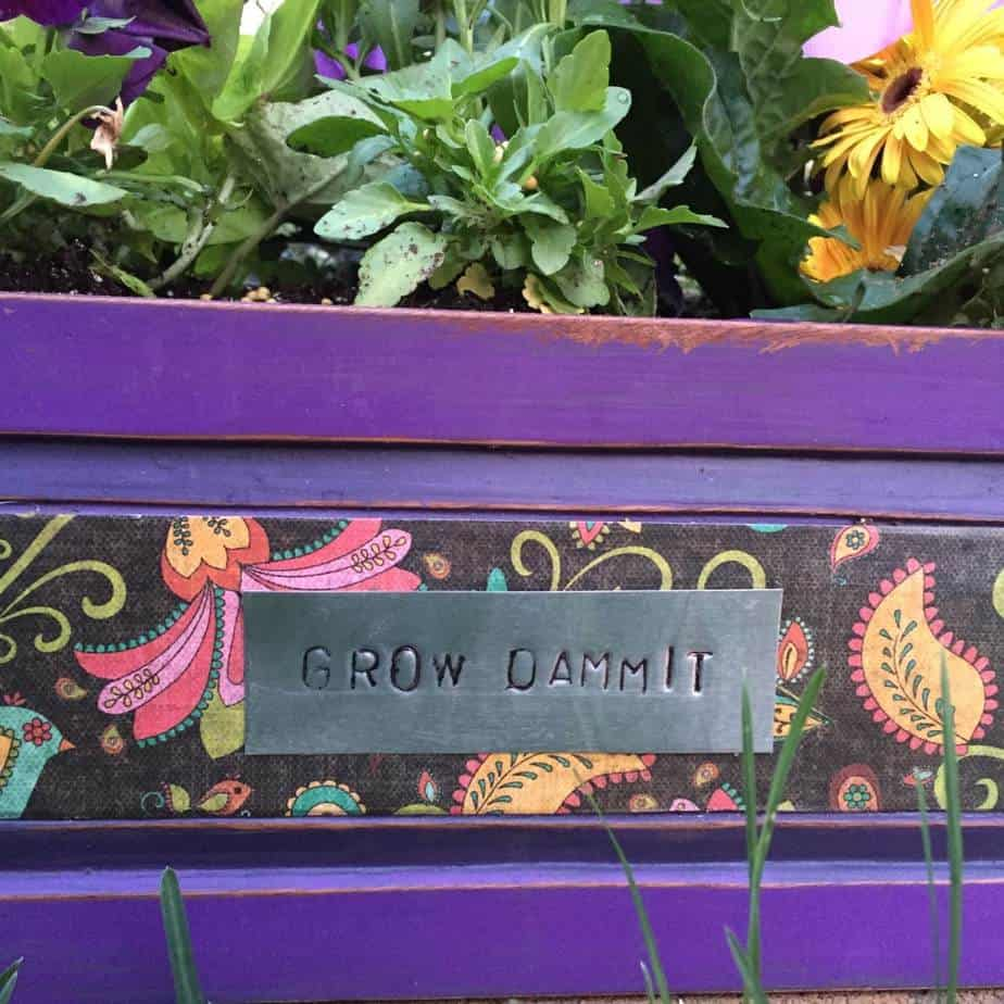 Closeup of the old drawer turned planter | Cool DIY Projects