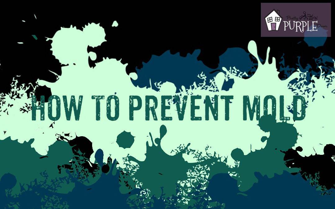 How to Prevent Mold [Infographic]