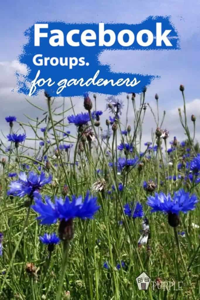 Facebook groups for gardeners and landscapers Pin image