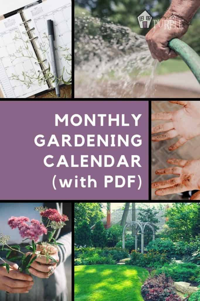 Monthly gardening calendar for busy gardeners Pinterest Image