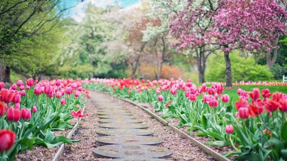 Online Garden Design Courses Diy Your Home Landscape Pretty