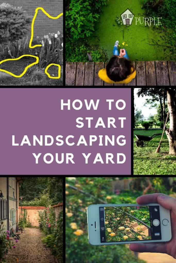 How to start landscaping your yard when you don't know anything