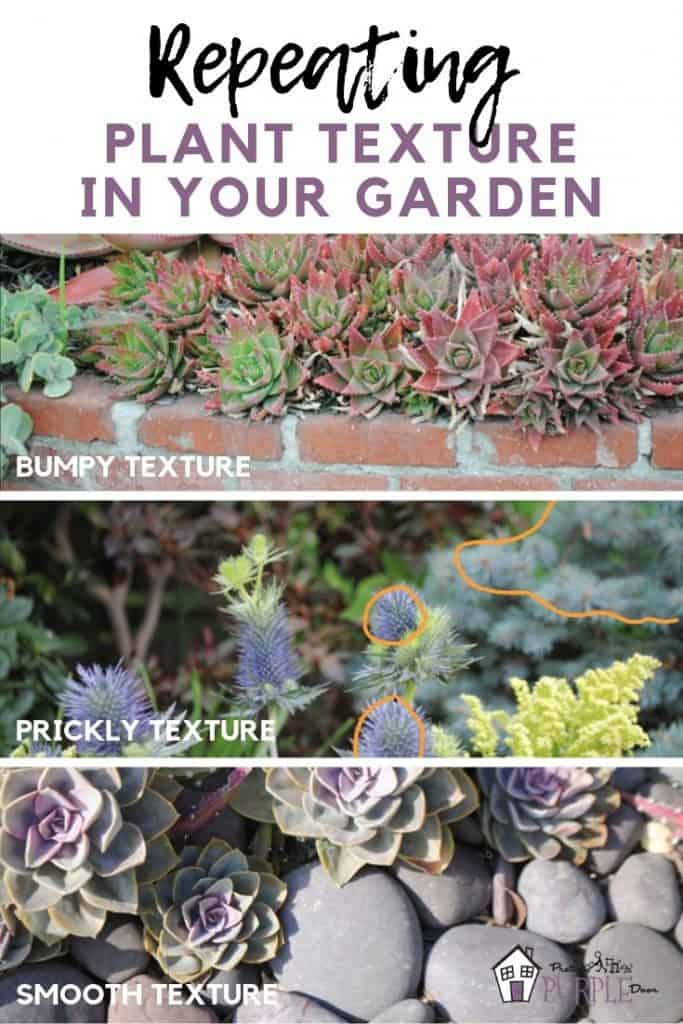 Repeating plant texture in your garden