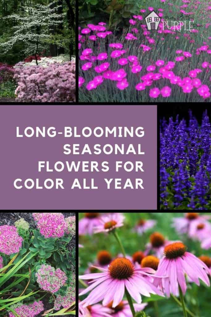 creating seasonal flower and plant groupings