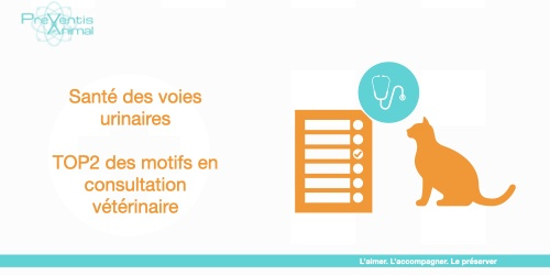 analyse urinaire cystite infection