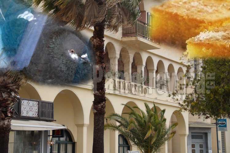 Κερνάει ραβανί το Δημαρχείο; – Η Δημοτική Ραδιοφωνία Πρέβεζας και τα… πουλιά!!!_5e0503cb6d2e3.jpeg