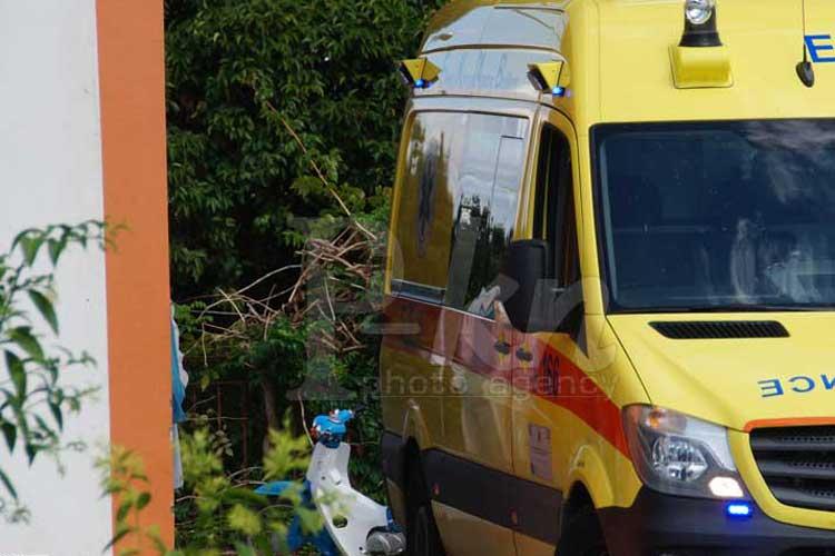 Νέο περιστατικό με επίθεση αδέσποτου σκύλου στην Κυανή Ακτή, στην Πρέβεζα_5e06765037586.jpeg