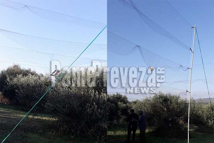 Πρέβεζα: Πρωτοφανής υπόθεση λαθροθηρίας στον Ωρωπό – Είχαν στήσει δίχτυα εκατό μέτρα για πουλιά!!_5e04eff7dcfd0.jpeg