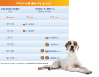 Previcox Dosage For Dogs Chart - Best Picture Of Chart ...