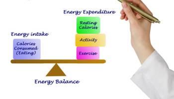 Energie - rovnováha mezi příjmem a výdejem