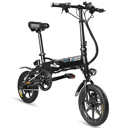 FIIDO D2 Electric Bicycle