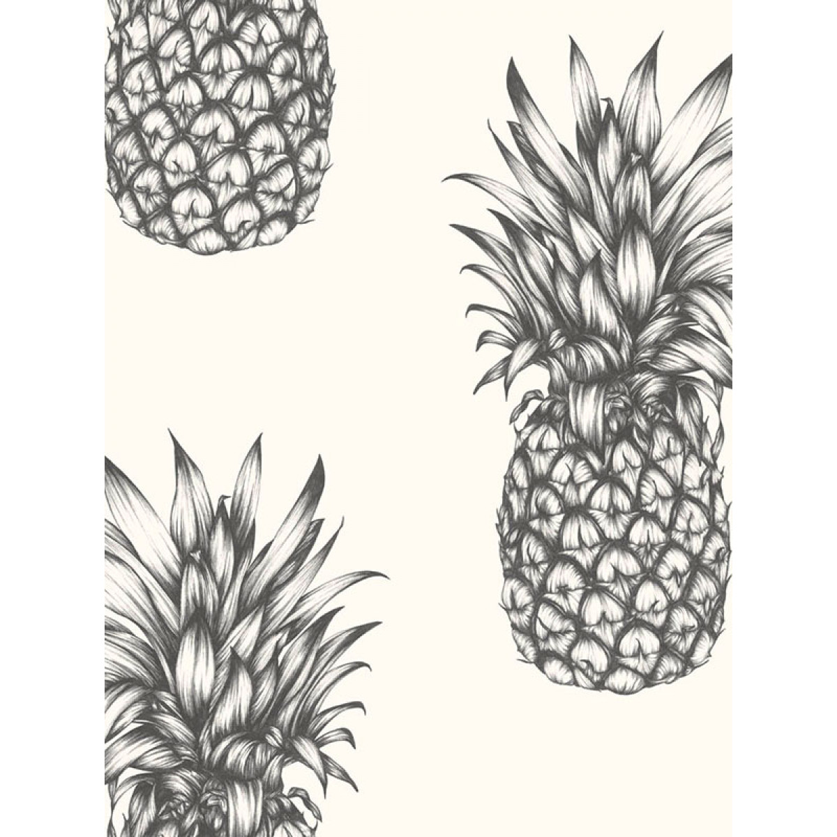 Tropics Copacabana Pineapple Wallpaper  Black  White