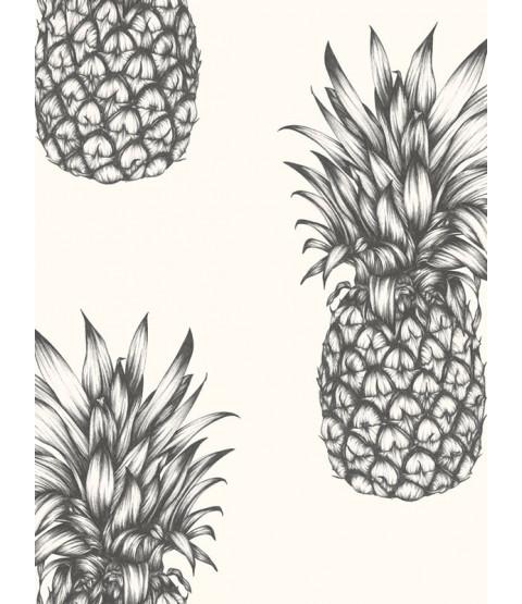 Be A Pineapple Quote Wallpaper Tropics Copacabana Pineapple Wallpaper Black Amp White