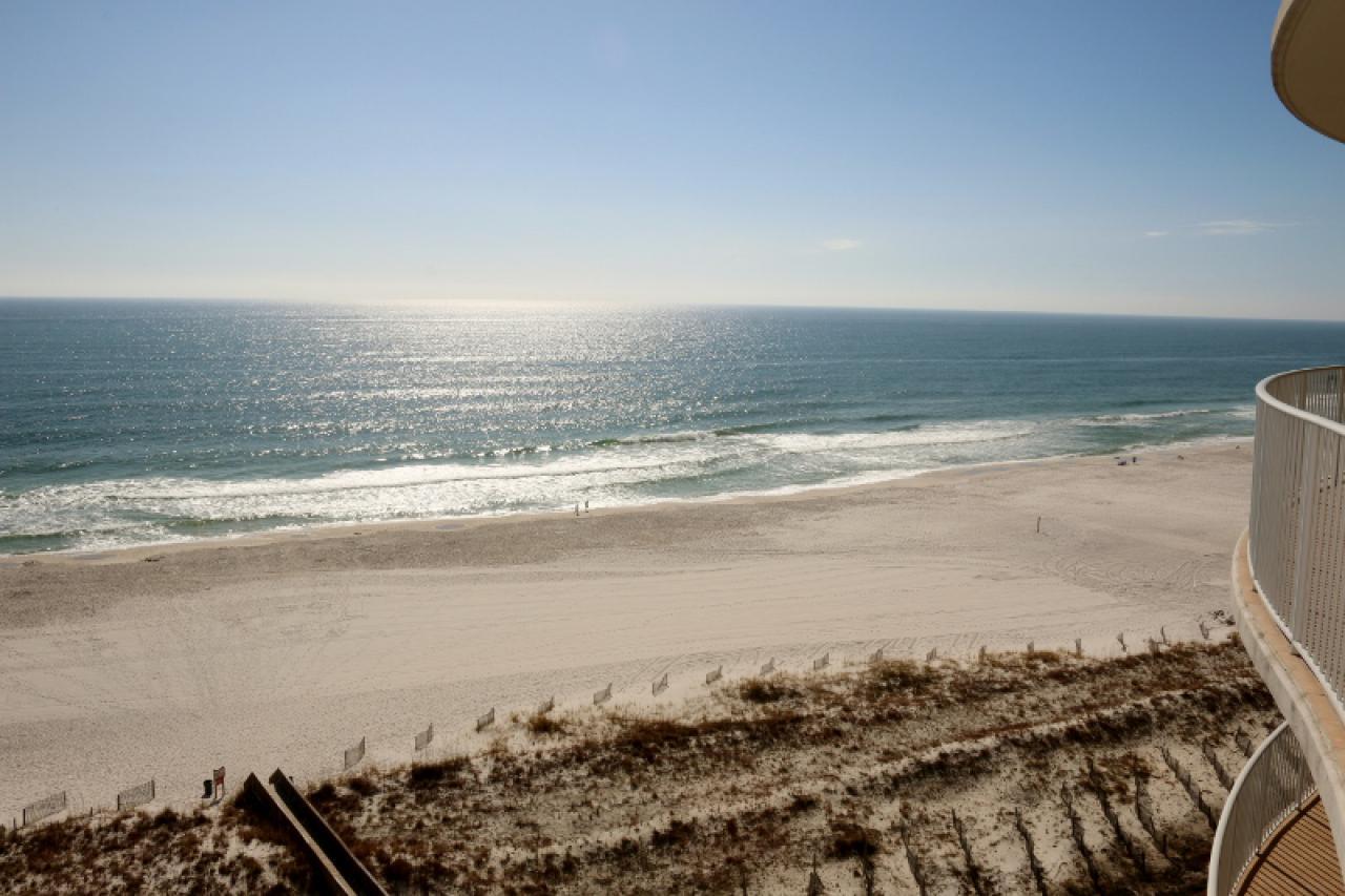 Availibility for Turquoise Place Orange Beach AL 801D