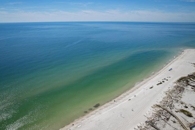 Availibility for Phoenix West 2 Orange Beach AL 2807 Vacation Rental