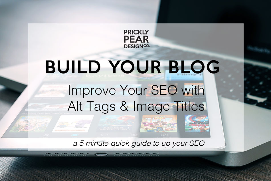 Improve Your SEO with Alt Tags & Image Tags | Prickly Pear Design Co.
