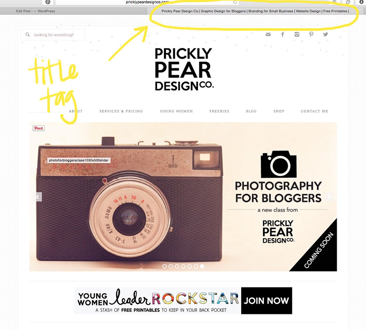 Location of Title Tag on a Web Page |Grow Your SEO with Title Tags | Build Your Blog in 15 minutes or less | Prickly Pear Design Co. | DIY small business web design | DIY marketing | DIY graphic design