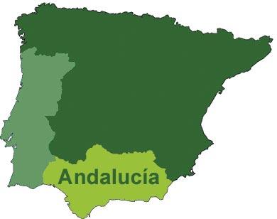 1Historia  Platos tpicos de Andaluca