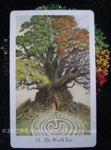 Major 21 The World Tree