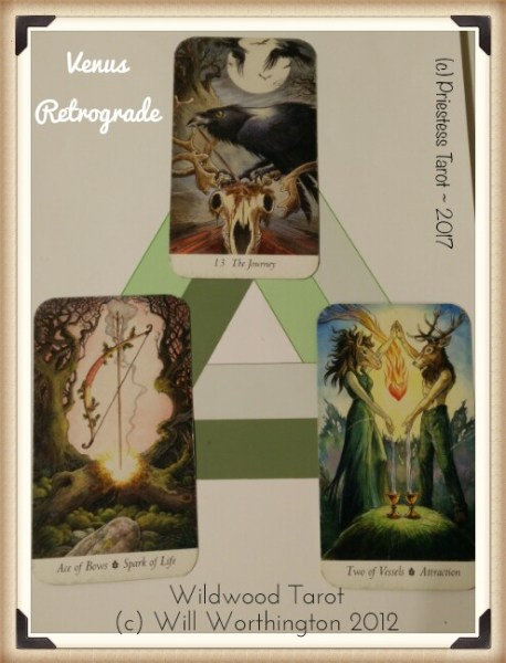 venus retrograde cards