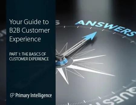 eBook: Guide to B2B Customer Experience 1
