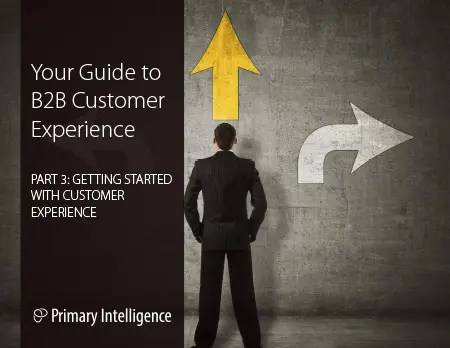 eBook: B2B Customer Experience 3
