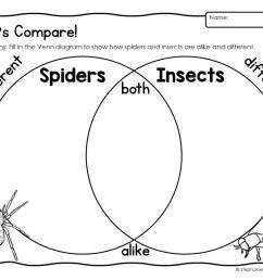 spider unit first grade spider unit 1st grade spider unit for first grade [ 1056 x 816 Pixel ]