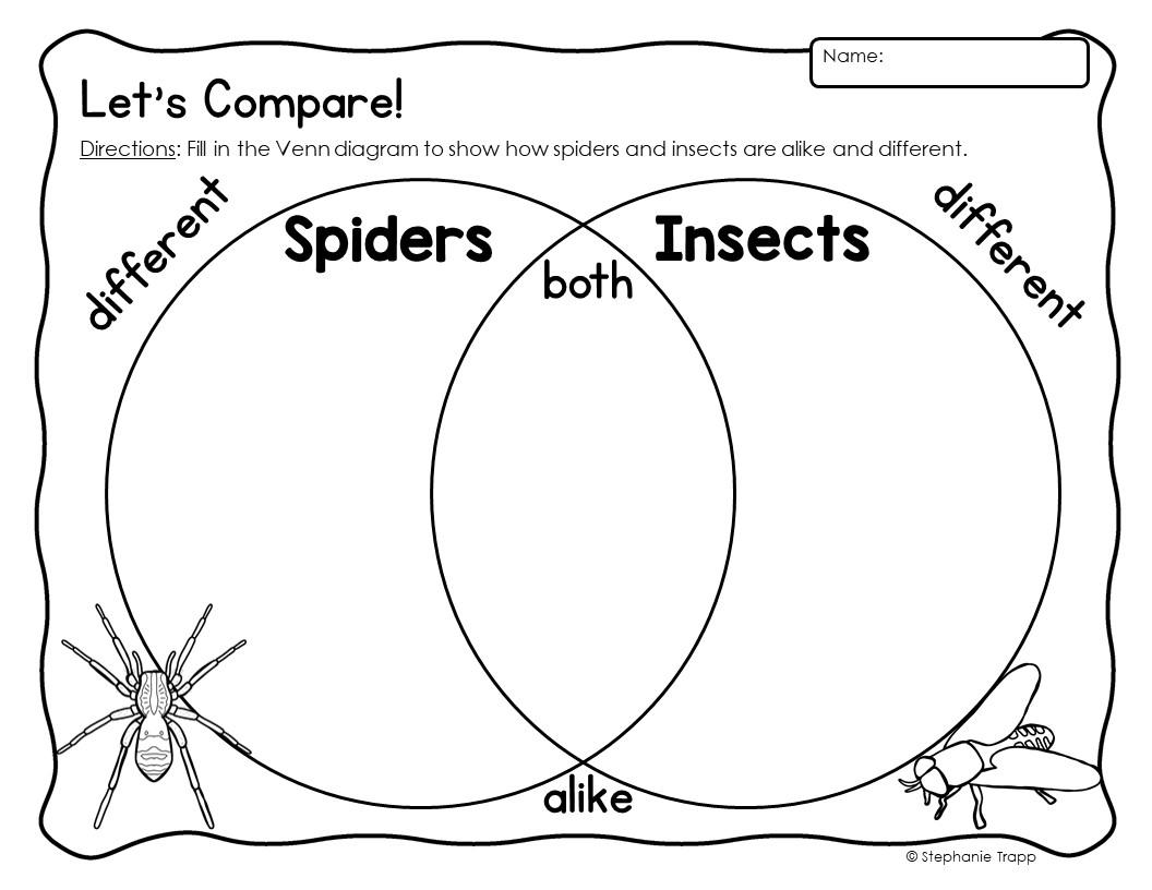 hight resolution of spider unit first grade spider unit 1st grade spider unit for first grade