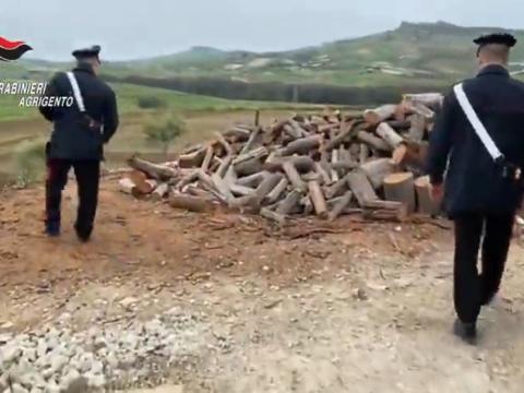 Cronaca Agrigento, carabinieri sventano furto legna nelle campagne di Naro
