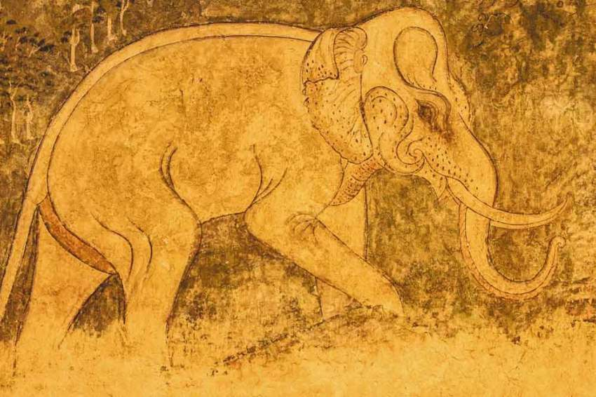 interesting facts about extinct animals