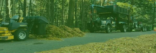 primavera landscape commercial