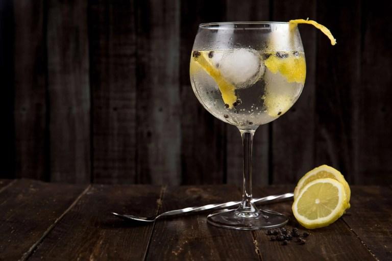 gin 1587940369 scaled