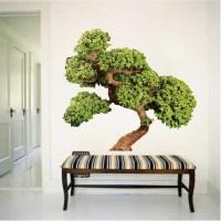 Bonsai Tree Wall Decal Mural - Asian Tree Wall Graphic ...