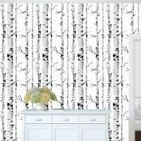 Birch Tree Self Adhesive Removable Wallpaper _ Birch Tree ...