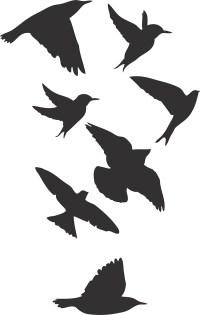 bird decals - DriverLayer Search Engine
