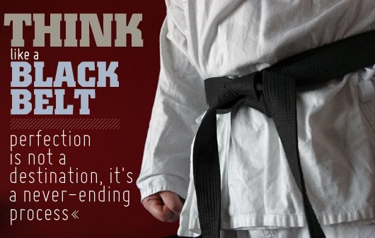 Think Like a Black Belt Perfection is Not a Destination