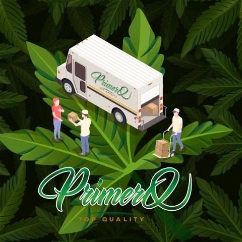 Primero-numero-1-del-cbd-online-hashish-cbd-Consegne-a-domicilio-Cannabis-light-Roma