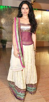 Some Lesser Known Facts About Shikha Singh
