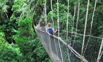 Adventure Vacation Safari in Uganda Rwanda Africa 10 Days
