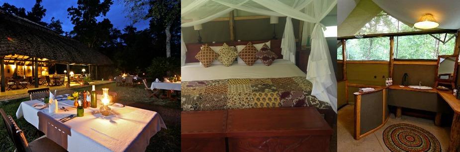 Ishasha Wilderness Camp- luxury Safari Lodges in queen elizabeth np