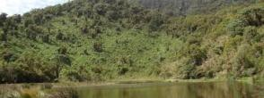 Lake Ngezi Hike as a Rwanda Safari activity in Volcanoes National Park