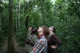Mabira-Forest2-940x626