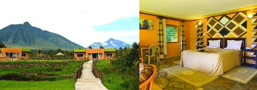 4 Days Rwanda Safari