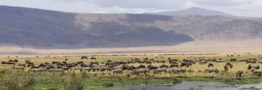 Ngorongoro Crater-tanzania safaris