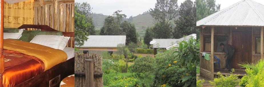 Nshongi Gorilla Resort - budget accommodation in bwindi np