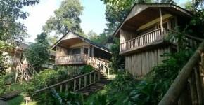 buhoma-lodge