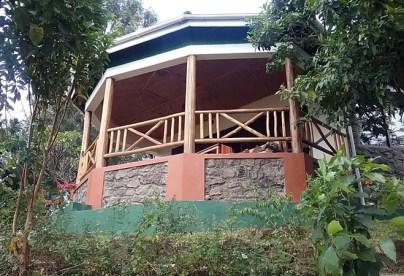 bwindi jungle lodge