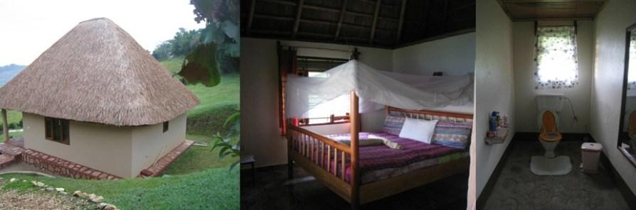 chimpanzee forest lodge- safari accommodation in kibale np