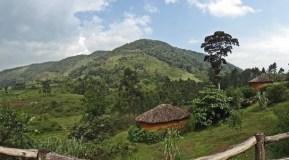 mahogany-springs lodge