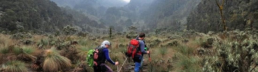 mountain-rwenzori-magheritah-peak-climbig